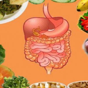 Digestivno zdravlje